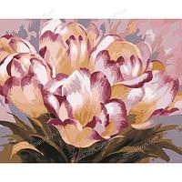 Картина по номерам «Нежные тюльпаны»