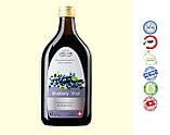 """Напій """"Чорниця Вітал"""" / Blueberry Vital, загальнозміцнюючий, фото 2"""