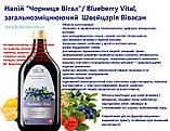 """Напій """"Чорниця Вітал"""" / Blueberry Vital, загальнозміцнюючий, фото 3"""