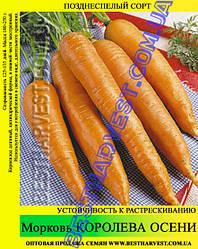 Насіння моркви «Королева Осені» 100 г
