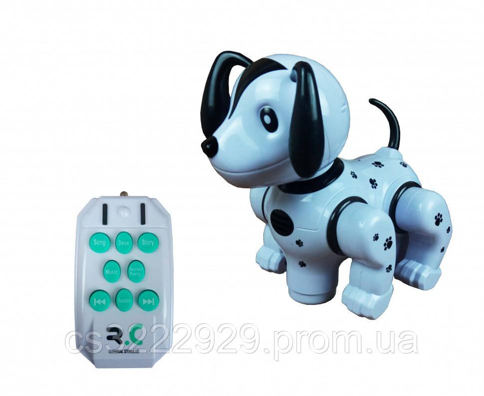 Робот Собака на радиоуправлении 987