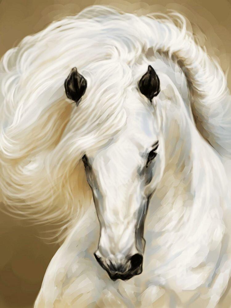 КДІ-0944 Набір алмазної вишивки Грація. Білий кінь
