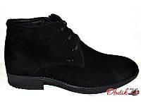 Ботинки мужские зимние классические замша на меху черные Uk0128