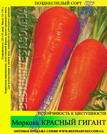 Семена моркови Красный гигант 1 кг