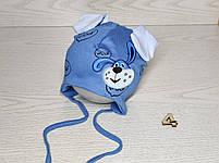 Шапка для мальчика трикотажная с собачкой и ушками Размер 40-42 см Возраст 1-3 месяцев, фото 5