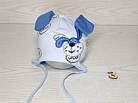 Шапка для мальчика трикотажная с собачкой и ушками Размер 40-42 см Возраст 1-3 месяцев, фото 4