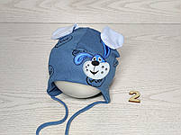 Шапка для мальчика трикотажная с собачкой и ушками Размер 40-42 см Возраст 1-3 месяцев, фото 3