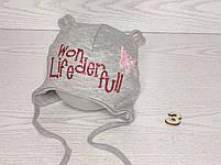 Шапка для девочки с бабочкой блеск на завязках трикотажная Размер 44-46 см, фото 4