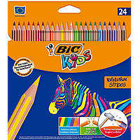 Карандаши цветные 24цв. BIC Kids Evolution Stripes 950525