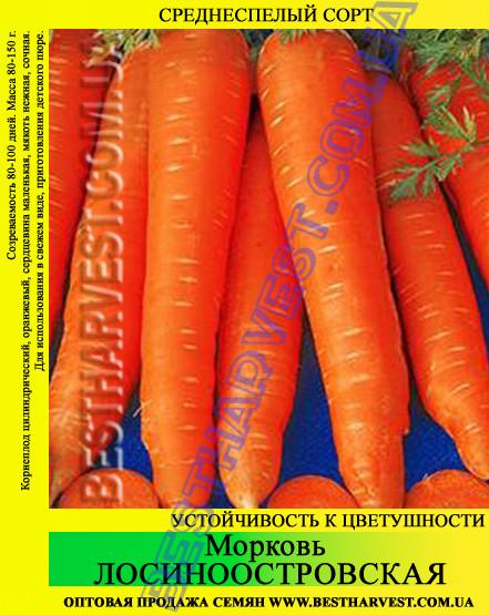 Семена моркови Лосиноостровская 1 кг