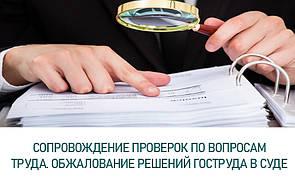 Сопровождение проверок Государственной службы Украины по вопросам труда. Обжалование решений Гоструда в суде.