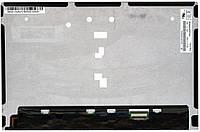 """Матрица для планшета 10,1"""", Slim (тонкая), 30 pin (снизу справа), 1280x800, Светодиодная (LED), без креплений,"""