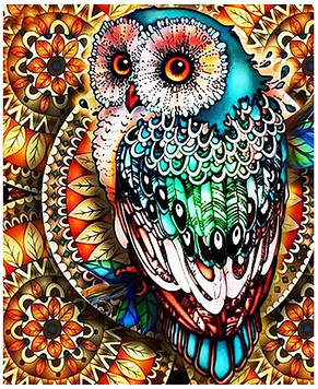 Картина по номерам 40х50 см DIY Цветная сова (NX 3908)