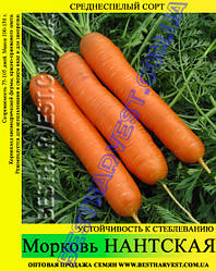 Насіння моркви «Нантська» 100 г