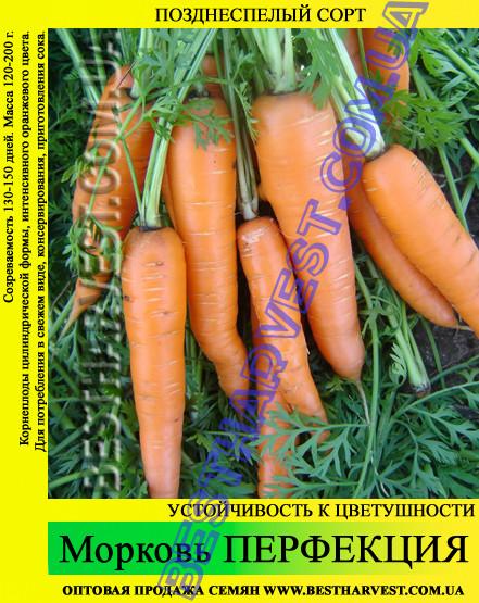 Семена моркови Перфекция 1 кг