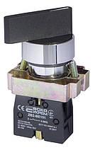 XB2-BG21 поворотна Кнопка з ключем 2-х поз.