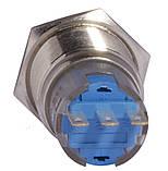 TYJ 19-311 Кнопка металева пласка з фікс., 1NO+1NC, фото 3