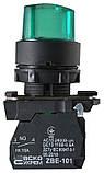 TB5-AK123M5 поворотна Кнопка зелена 2-х поз. з підсвічуванням, фото 3