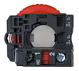 TB5-AS542 Кнопка безпеки.Повернення поворотом. d40mm, фото 2