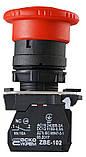TB5-AS542 Кнопка безпеки.Повернення поворотом. d40mm, фото 5