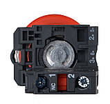 """TB5-AT42 Кнопка безпеки """"Тягни-штовхай"""", фото 2"""
