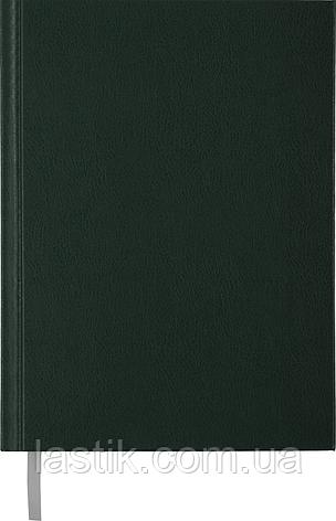 Ежедневник недат STRONG L2U A5 зеленый бумвинил, фото 2