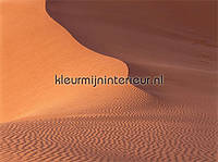 Фото обои Eijffinger Sahara 346008