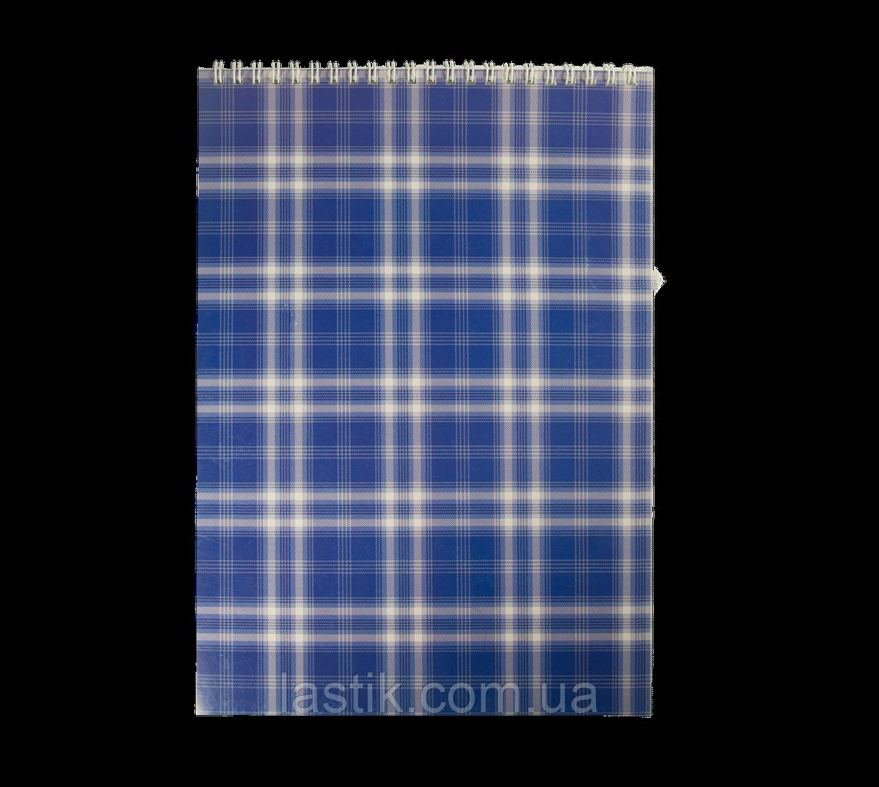 /Блокнот на пружині зверху SHOTLANDKA А4 48 л клітина синій