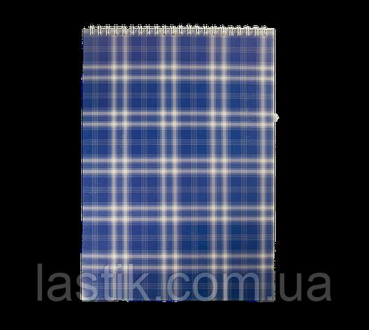/Блокнот на пружині зверху SHOTLANDKA А4 48 л клітина синій, фото 2