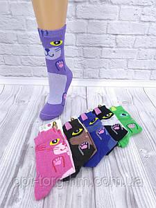 """Жіночі шкарпетки МІКС """"Котик"""""""