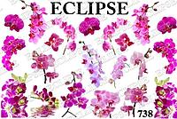Pur Pur Eclipse Слайдер дизайн 738
