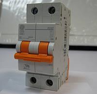 Автоматический выключатель GE 2р 63А General Electric