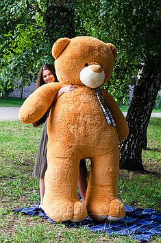 Плюшевий Ведмедик Вэтли 250 см