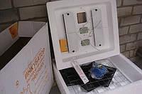 Инкубатор Несушка  - 63/220/12В (аналоговый)