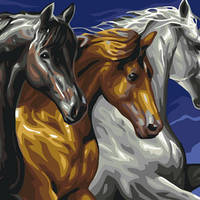 Картина по номерам Трио лошадей, размер 40*50 см, зарисовка полная, на подрамнике