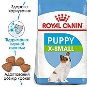 Royal Canin X-Small Junior 14кг для цуценят мініатюрних порід до 10 місяців