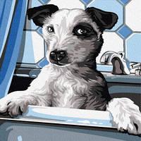 Картина по номерам Собачка на купании, размер 40*50 см, зарисовка полная, на подрамнике