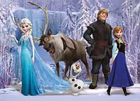 Куклы из мультфильмов Winx,Frozen ,Sofia , Рапунцель,Доктор Плюшева