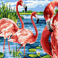 Картина по номерам Яркие фламинго, размер 40*50 см, зарисовка полная, на подрамнике