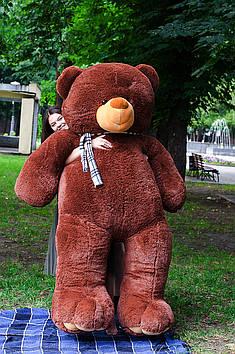 Плюшевый Мишка Вэтли 250 см Шоколадный