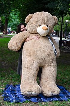 Плюшевий Ведмедик Вэтли 250 см Мокко
