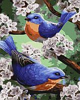 """Картина по номерах """"Синички в первоцвіті"""" (GX24696)"""