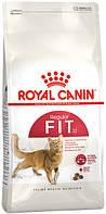 Сухий корм Royal Canin Fit для взрослых котов от 1 года бывающих на улице 10 кг