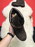 Чоловічі / жіночі зимові черевики Timberland Brown Fure Premium коричневі чоловічі черевики тімберленд зимові, фото 2