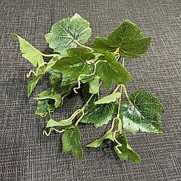 Куст винограда латекс Люкс 35 см