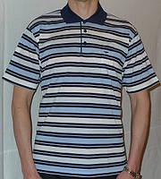 Рубашка поло в полоску, фото 1