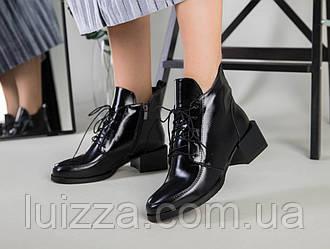 Ботинки женские кожа наплак черные на небольшом каблуке демисезонные