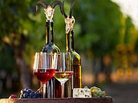 Оригинальная пробка для винных бутылок Череп Буйвола