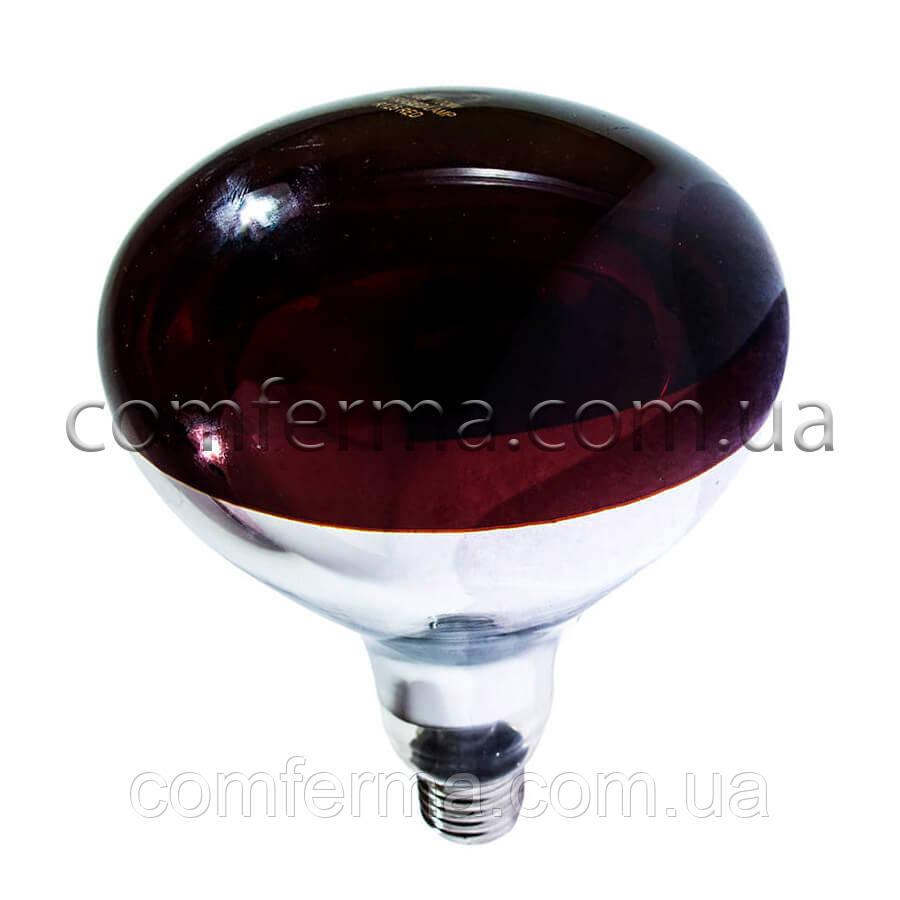 Лампа інфрачервона R125 250 Вт черв. BS