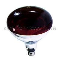Лампа инфракрасная R125 250 Вт красн. BS, фото 1
